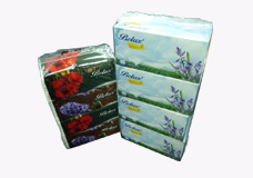 Facial Tissues / Travel Pack